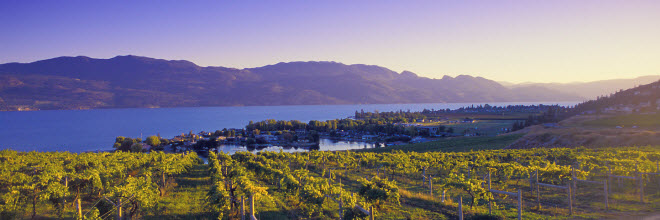 Perfect Home To The Open Ranches And Rolling Hills In The Cariboo Region, The  Abundant Orchards And Vineyards Of The Okanagan, And The Majestic Beauty Of  The ...
